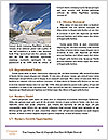0000087081 Word Templates - Page 4
