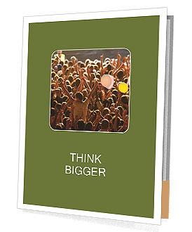 0000087087 Presentation Folder