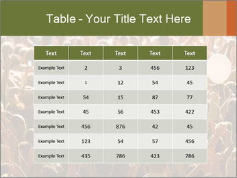 0000087087 PowerPoint Template - Slide 55