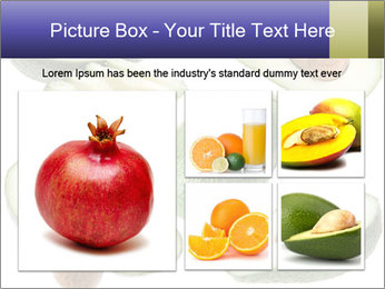 Avocado PowerPoint Templates - Slide 19