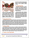 0000087108 Word Templates - Page 4