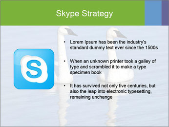 Swans swimming PowerPoint Templates - Slide 8