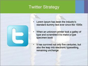 Swans swimming PowerPoint Templates - Slide 9