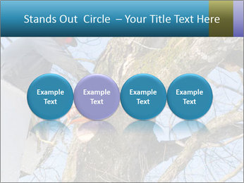 0000087140 PowerPoint Template - Slide 76