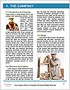 0000087140 Word Template - Page 3