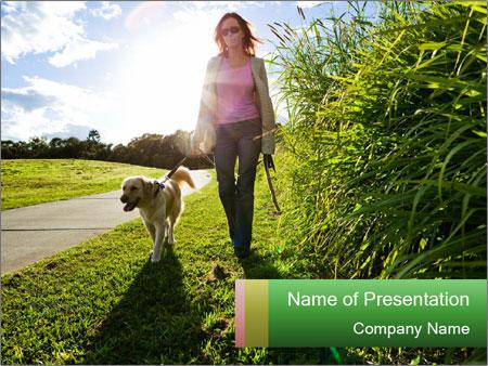 Golden retriever walking PowerPoint Template