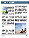 0000087163 Word Template - Page 3