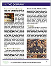 0000087164 Word Template - Page 3