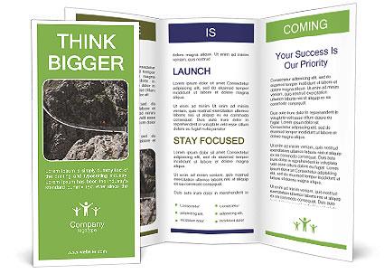 0000087168 Brochure Template