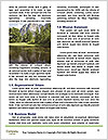 0000087168 Word Template - Page 4