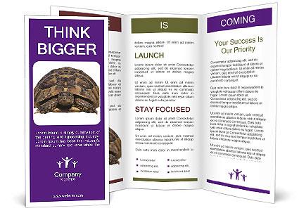 0000087173 Brochure Template