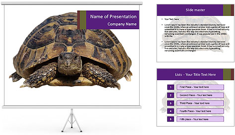0000087173 PowerPoint Template