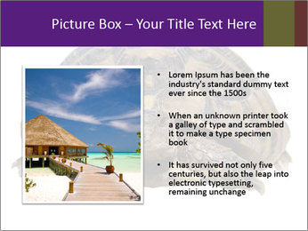 0000087173 PowerPoint Template - Slide 13
