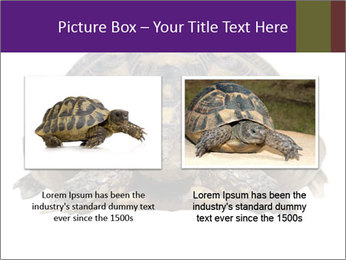 0000087173 PowerPoint Template - Slide 18