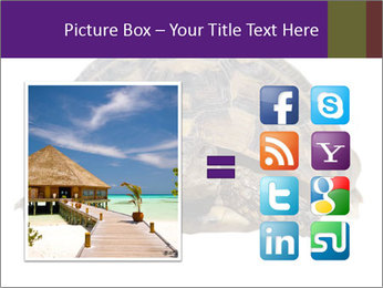 0000087173 PowerPoint Template - Slide 21