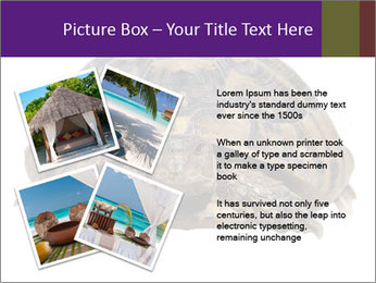 0000087173 PowerPoint Template - Slide 23