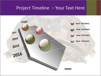 0000087173 PowerPoint Template - Slide 26