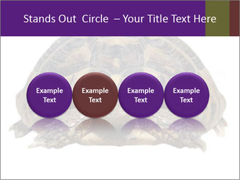 0000087173 PowerPoint Template - Slide 76