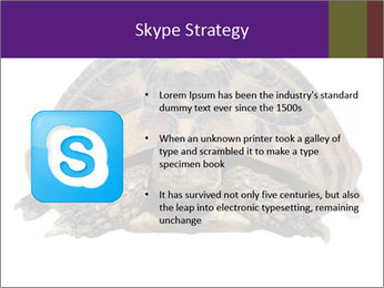 0000087173 PowerPoint Template - Slide 8