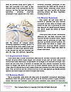 0000087193 Word Templates - Page 4
