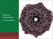 The proteasome PowerPoint Templates