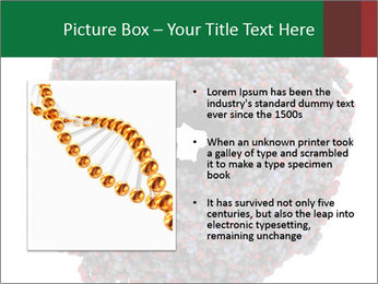 The proteasome PowerPoint Templates - Slide 13
