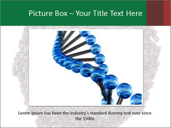 The proteasome PowerPoint Template - Slide 15