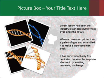 The proteasome PowerPoint Template - Slide 23