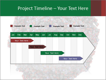 The proteasome PowerPoint Template - Slide 25