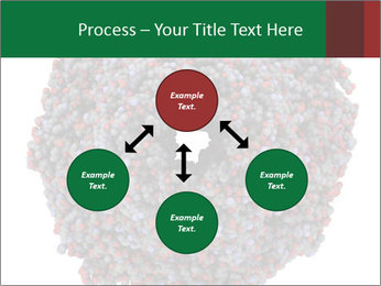 The proteasome PowerPoint Template - Slide 91