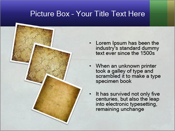 0000087207 PowerPoint Template - Slide 17