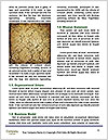 0000087207 Word Template - Page 4