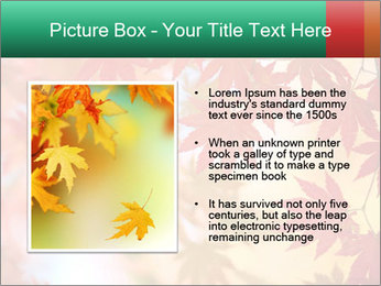 Autumn leaves PowerPoint Template - Slide 13