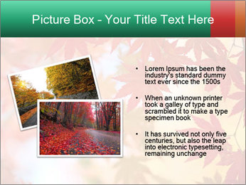 0000087212 PowerPoint Template - Slide 20
