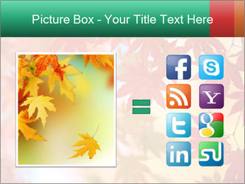 Autumn leaves PowerPoint Template - Slide 21