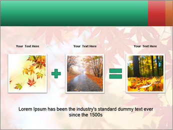 Autumn leaves PowerPoint Template - Slide 22