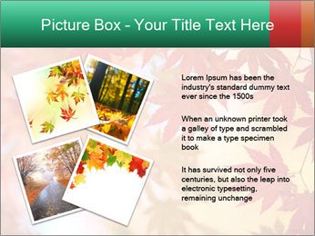 0000087212 PowerPoint Template - Slide 23