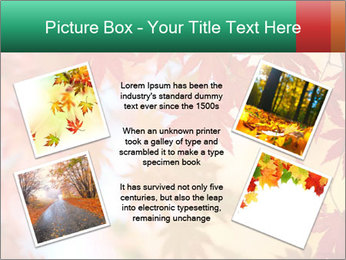 0000087212 PowerPoint Template - Slide 24