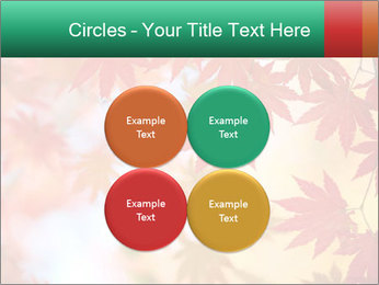 Autumn leaves PowerPoint Template - Slide 38