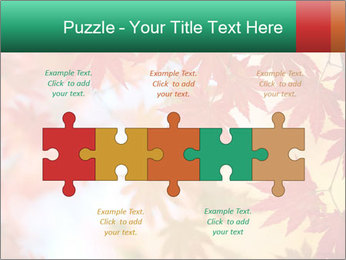 Autumn leaves PowerPoint Template - Slide 41