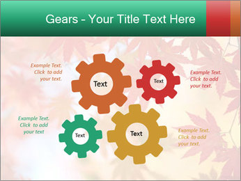 Autumn leaves PowerPoint Template - Slide 47