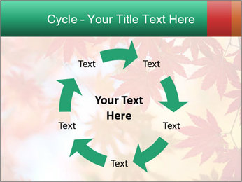 Autumn leaves PowerPoint Template - Slide 62
