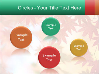 Autumn leaves PowerPoint Template - Slide 77