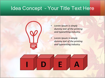 Autumn leaves PowerPoint Template - Slide 80