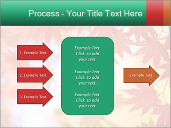 Autumn leaves PowerPoint Template - Slide 85