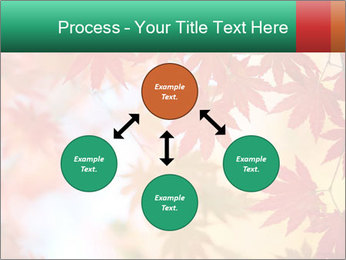 Autumn leaves PowerPoint Template - Slide 91