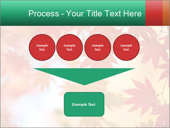 Autumn leaves PowerPoint Template - Slide 93