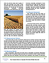 0000087215 Word Templates - Page 4