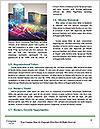0000087216 Word Template - Page 4