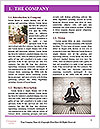 0000087220 Word Template - Page 3